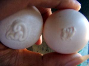 telur1